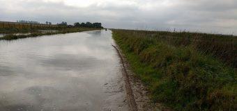 Buscan reparar un camino rural para que sus hijos vuelvan a la escuela en Villa Saboya, aislada por el agua
