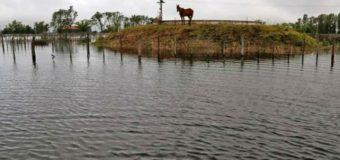 Las inundaciones por lluvias aislaron a tres localidades de General Villegas